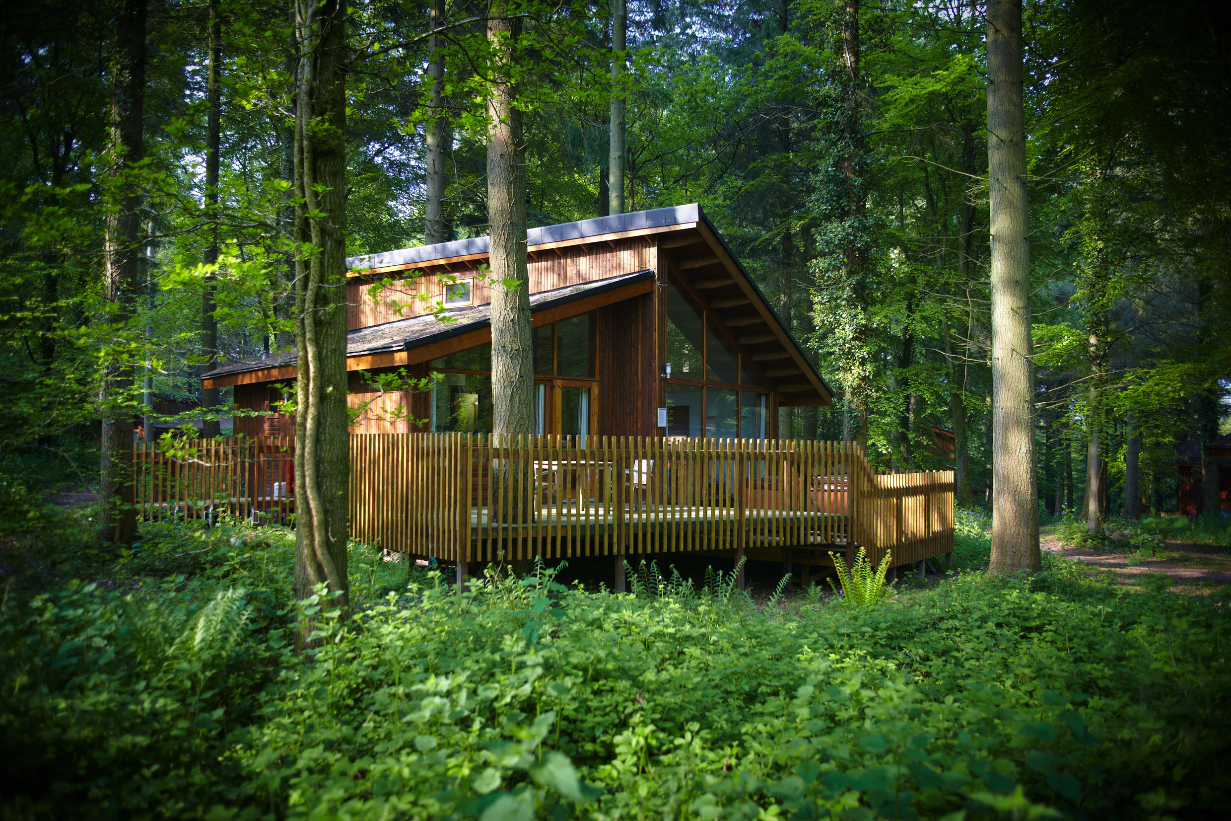 Forest Holidays Cabin Picture 2016