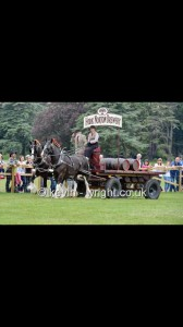 Hook Norton Brewery Pair driven by Miss Czak